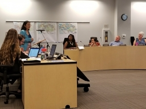 Photo of El Cerrito resident and TransForm Co-Interim Executive Director Ann Cheng delivering a public comment before the CCTA Board